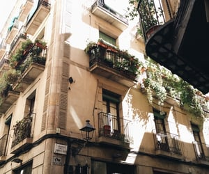 city, architecture, and flowers image