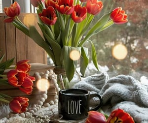amor, flores, and inspiracion image