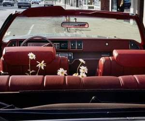 burgundy, car, and flowers image