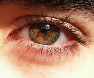 eyes, olhos, and tumblr image