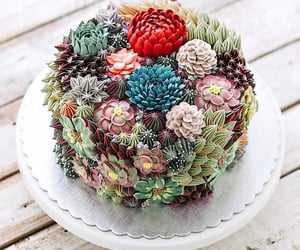 cake, food, and succulents image