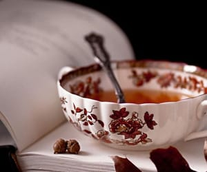 cozy, tea, and cup image