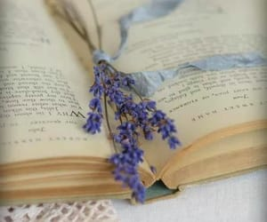 book, lavender, and books image