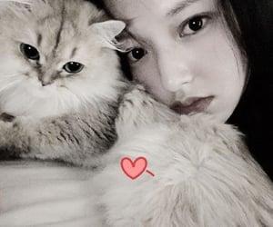 cosmic girls, chengxiao selfie, and chengxiao image