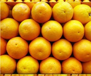 FRUiTS, photography, and citrus image