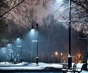 good night, lights, and trees image