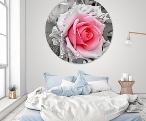 floral, nature, and roses image
