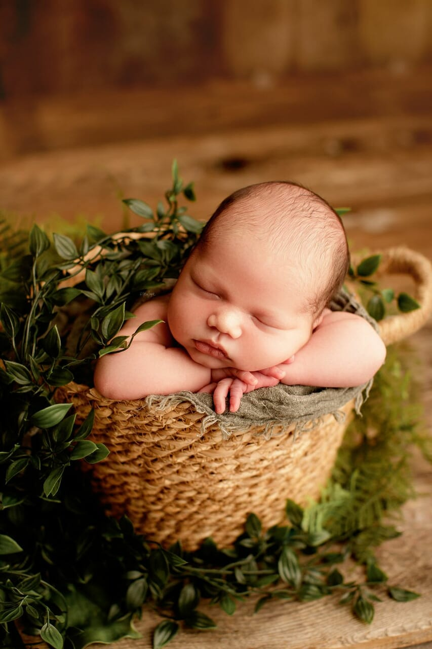 newborn photography, newborn photographer, and newborn photo shoot image