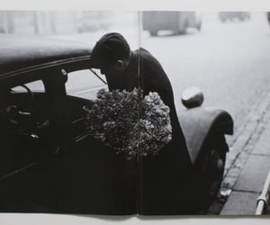 flowers, man, and photography image