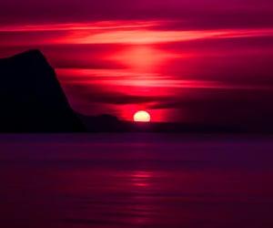 sundown, tropics, and beach lovers image