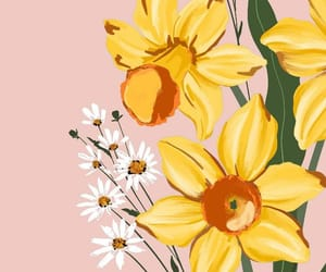 art, daffodils, and floral image