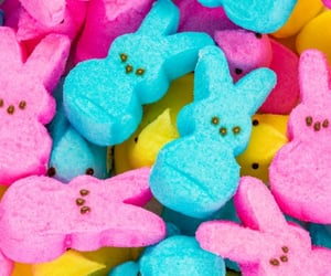 bunnies, candy, and easter image