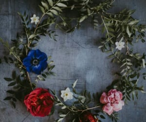 aesthetic, circle, and floral image