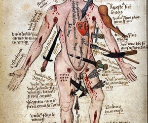 anatomy, man, and art image