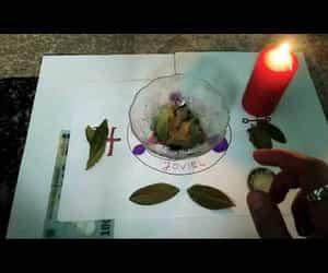 video, atrage banii asa, and bay leaf image