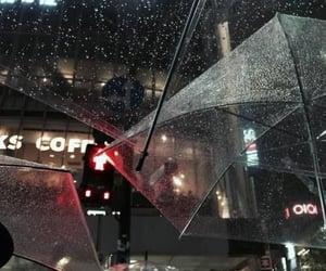 rain, aesthetic, and umbrella image
