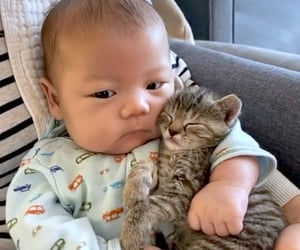 animals, asian, and babies image