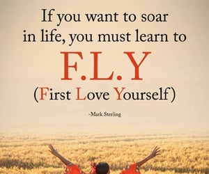 fly, learn, and quotes image