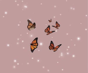 butterfly, yes, and 🌺 image