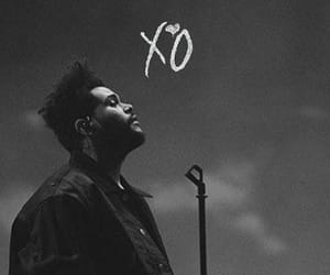 aesthetic, artist, and xo image