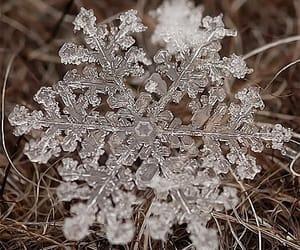 beauty, snowflake, and spiritual image