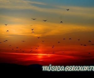 musica relaxante, musica para dormir, and música para relaxar image