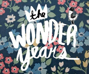 the wonder years and text image