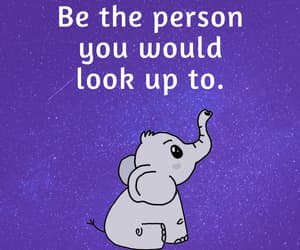 elephant, life quotes, and inspiration image