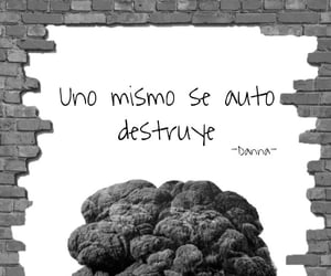 amor, for you, and frases image