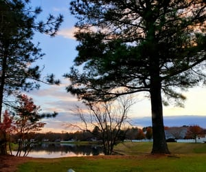 lake, outdoor, and trees image