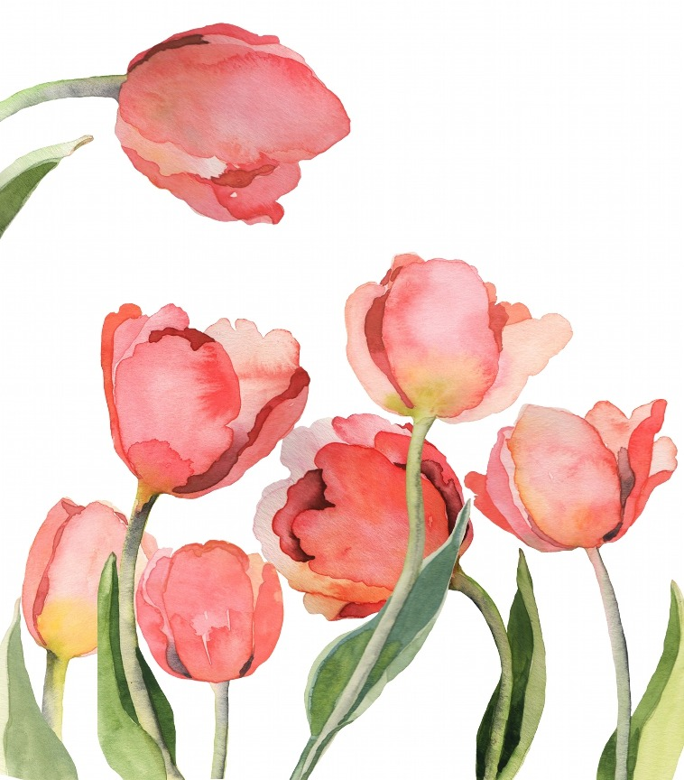 flowers, art, and pretty image