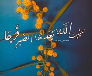 Image by lotus flower