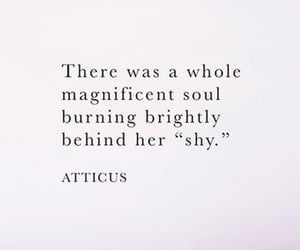 quotes and shy image