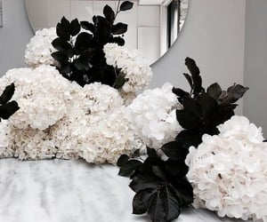 flowers, bouquet, and mirror image