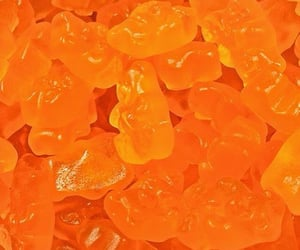archive, candy, and orange image