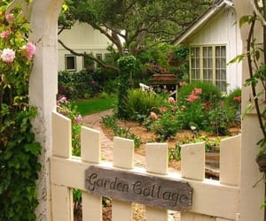 garden, aesthetic, and cottage image