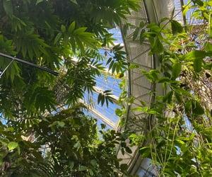 aesthetic, botanic garden, and botanical image