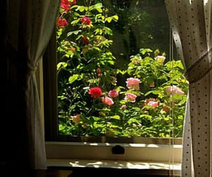 aesthetic, flowers, and curtains image