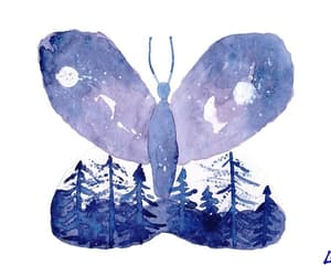 home decor, night sky art, and butterfly art image