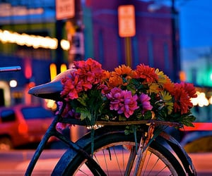 aesthetic, city, and floral image