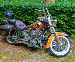 bike, harley, and motorcycle image
