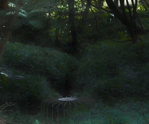 ethereal, forest, and weird image