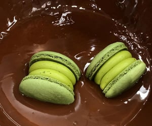 aesthetic, biscuit, and lime green image