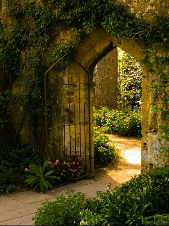 aesthetic, garden, and harry potter image