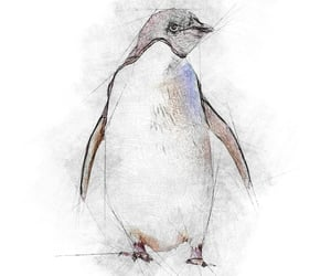 penguin, aquarelle, and williamcarterfineart image