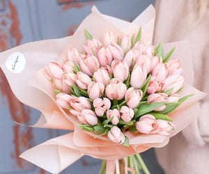 aesthetic, pink, and tulips image