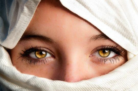 eye and diorsbicht image