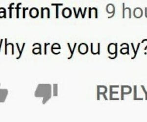 comment, lgbtq, and meme image