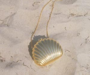 beach, shell, and bag image