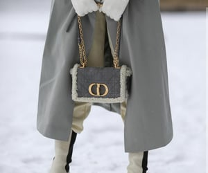 blogger, bottega veneta, and Christian Dior image